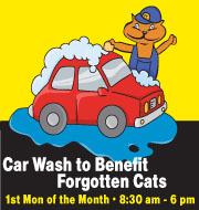 Forgotten Cats Car Wash Fundraiser 1st Monday of each Month!