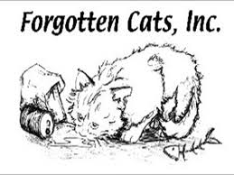 About Forgotten Cats