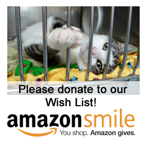 Donate to our Amazon Smile Wish List!