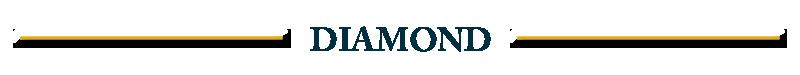 sponsors_DIAMOND